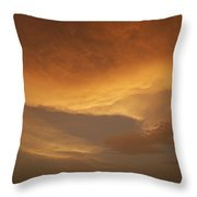 Skc 0324 Golden Glow Throw Pillow