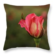 Skc 0422 Blossoming Bud Throw Pillow