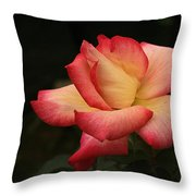 Skc 0432 Blooming And Blossoming Throw Pillow