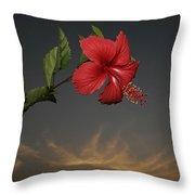 Skc 0452 Hibiscus 3 Throw Pillow