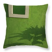 Skc 0682 Nature In Shadow Throw Pillow