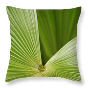 Skc 0691 Paths Of Palm Meeting At A Point Throw Pillow