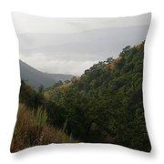 Skc 0763 Dry Green Landscape Throw Pillow