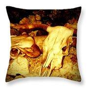Skulls In Sepia Throw Pillow