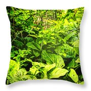 Skunk Cabbage Thicket Throw Pillow