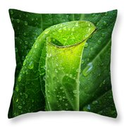 Skunk Cabbage Square Throw Pillow
