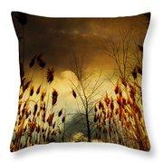 Autumn Lights Sky Colors  Throw Pillow