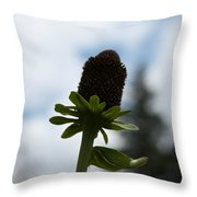 Sky Flower Throw Pillow