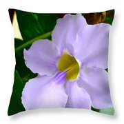 Sky Flower Or Clock Vine Throw Pillow