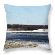 Sky Full Of Ducks Throw Pillow