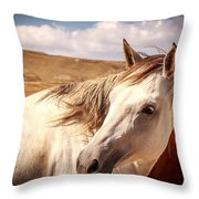 Sky Horse  Throw Pillow