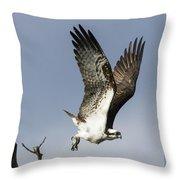 Sky Hunter Throw Pillow