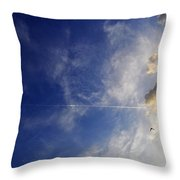 Sky Plane Bird From The Series The Imprint Of Man In Nature Throw Pillow