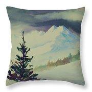 Sky Shadows And Spruce Throw Pillow