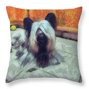 Skye Terrier Throw Pillow