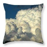 Skyward Sculpture Throw Pillow