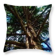 Skyward Spruce Throw Pillow