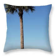 Sunshine Skyway Bridge  Throw Pillow