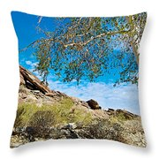 Slanted Rocks And Sycamore Tree  In Andreas Canyon In Indian Canyons-ca Throw Pillow