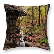Slate Bottom Creek Throw Pillow