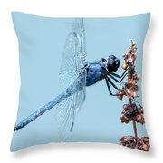 Slaty Skimmer Throw Pillow