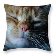 Sleeping Abby Framed Throw Pillow