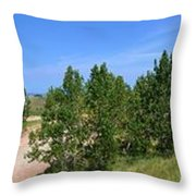 Sleeping Bear Dunes National Lakeshore Throw Pillow