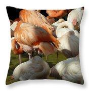 Sleeping Beauties Throw Pillow