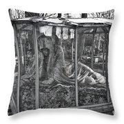 Sleeping Beauty's Night Mare Throw Pillow