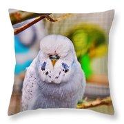 Sleeping Budgie Throw Pillow