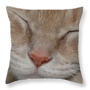 Sleeping Cat Face Closeup Throw Pillow