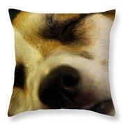 Sleeping Corgi Throw Pillow