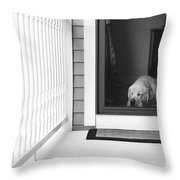 Sleeping Dog Throw Pillow by Diane Diederich