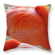Sleeping Flamingo Throw Pillow