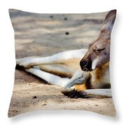 Sleeping Kangaroo Throw Pillow