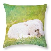 Sleeping Lamb Green Hue Throw Pillow