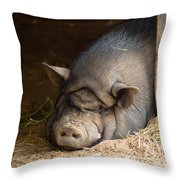 Sleeping Pig Throw Pillow