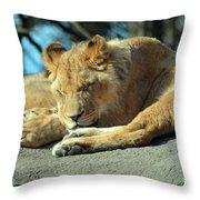 Sleeping Prince Throw Pillow