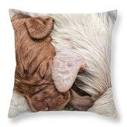 Sleeping Puppies Throw Pillow