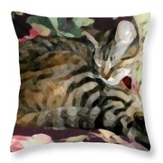 Sleeping Tabby Throw Pillow