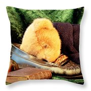 Sleeping Teddy Throw Pillow