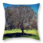 Sleeping Tree  Throw Pillow