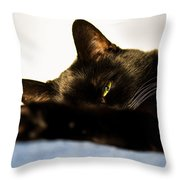Sleeping With One Eye Open Throw Pillow