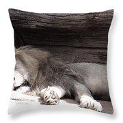 Sleepy Beauty Throw Pillow