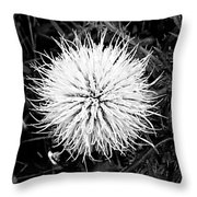 Sleepy Bee Throw Pillow