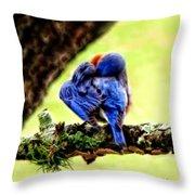 Sleepy Bluebird Throw Pillow