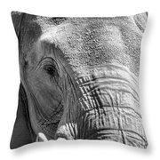 Sleepy Elephant Lady Black And White Throw Pillow