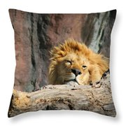 Sleepy Lion Throw Pillow