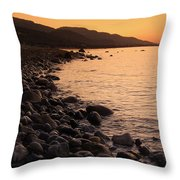 Sleepy Morning Throw Pillow