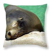 Sleepy Seal Throw Pillow